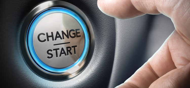 Succeeding At Large-Scale Change